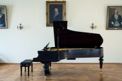 2017, Neu restaurierter Blüthner-Flügel im Festsaal des Logenhauses Hof